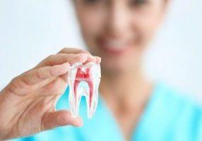 Canal Dentario